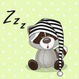 Sleeping Raccoon Royalty Free Stock Image