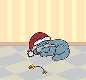Sleeping Santa Cat. Sleeping cat at the Santa Claus cap Stock Photo