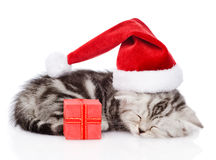 Sleeping scottish kitten with santa hat and red box. isolated on Royalty Free Stock Photo