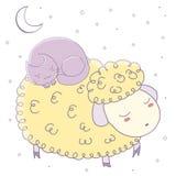 Sleeping sheep and cat Stock Image
