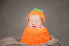 Newborn baby wearing a knitted carrot or pumpkin hat Stock Images