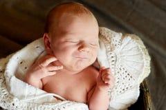 Sleeping sweet newborn Royalty Free Stock Photo