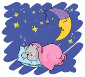 Sleeping teddy bear Royalty Free Stock Images