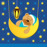 Sleeping teddy bear Royalty Free Stock Photo
