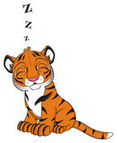 Sleeping tiger and signs z Stock Photography