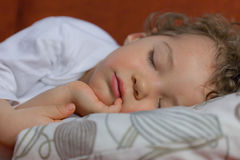 Sleeping toddler. Little boy fell asleep on the sofa Stock Images