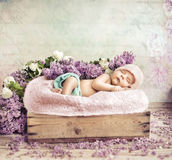 Sleeping toddler lying on flowers and blanket Royalty Free Stock Photography