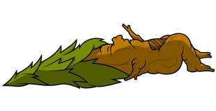Sleeping Tree Stock Image
