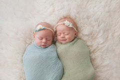 Sleeping Twin Baby Girls. Seven week old fraternal, twin baby girls swaddled and sleeping on a white flokati rug. One sister is smiling royalty free stock image