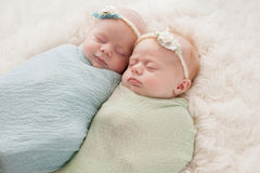 Sleeping Twin Baby Girls. Seven week old fraternal, twin baby girls swaddled and sleeping on a white flokati rug. One sister is smiling Royalty Free Stock Photography