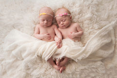 Sleeping Twin Baby Girls. Seven week old fraternal, twin baby girls sleeping on a white flokati rug