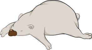 Sleeping white bear. Animals humor Stock Photography