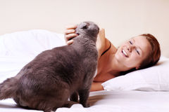 Sleeping woman with cat. On light background Royalty Free Stock Photo