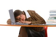 Sleeping young businesswoman stock image