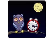 Sleepless_owl Imagem de Stock