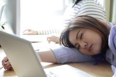 sleepy fotografia de stock