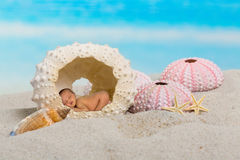 Sleepy baby in sea urchin Royalty Free Stock Photos