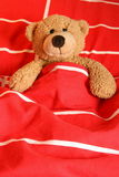 Sleepy bear. Bear happy to go to bed for a good night's rest stock photography
