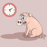 Sleepy cartoon pig in early morning. Tired swine Royalty Free Stock Images