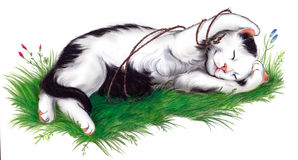 Cute cat asleep on the grass. Sweet kitten sleeping on the grass. Hand made artwork vector illustration