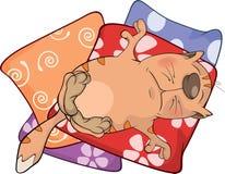 Cat on pillows. Cartoon Royalty Free Stock Photos