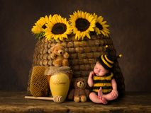Baby bee and antique beehive stock photo