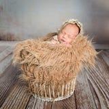 Sleepy infant in basket with blanket like weat Stock Photo