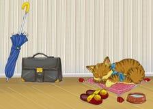 Sleepy kitty Royalty Free Stock Image