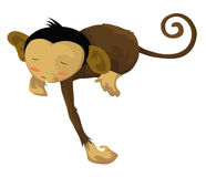 Sleepy  monkey Royalty Free Stock Photos