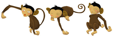 Sleepy  monkeys Stock Images