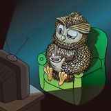 Sleepy Owl with Cup of Coffee, Watching TV Late at Night, Wahtching Sci-Fi, Comedy, Horror Movie. Funny Character Stock Photos