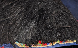 Sleepy Puli dog Royalty Free Stock Image