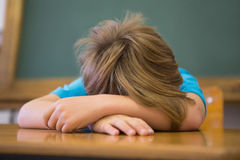 Sleepy pupil napping at desk in classroom. At the elementary school royalty free stock photo