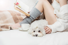 Sleepy sad calm small white dog with girl on the bed Royalty Free Stock Image