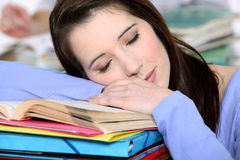 Sleepy student. Stock Photos