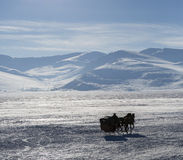 Sleigh on Cildir lake in Ardahan city of Turkey.  Royalty Free Stock Photo