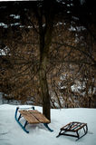 Sleigh. A cold winter day at the countryside Royalty Free Stock Photo