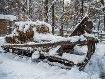 Sleigh loaded with hay under the snow, Novosibirsk, Russia stock photography