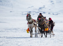 Sleigh pulled by a horse in lake frozen cildir. Royalty Free Stock Images
