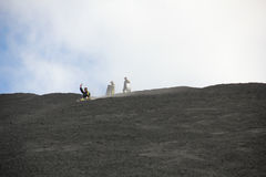 Sleigh ride on Cerro Negro volcano, Nicaragua royalty free stock photography