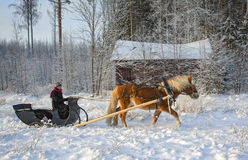 Sleigh ride with horse in winter Stock Photos