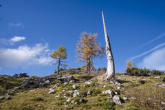 Sleme. Hike from Vršič to the beautiful Slemenova Špica in Juian Alps Stock Image