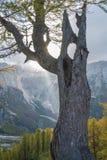 Sleme. Hike from Vršič to the beautiful Slemenova Špica in Juian Alps Stock Photography