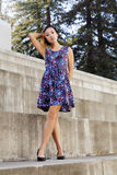 Slender Asian American Woman Standing Dress Royalty Free Stock Photography