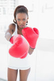Slender athletic woman boxing Royalty Free Stock Photos
