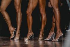 Slender beautiful woman legs in high heels Stock Photos