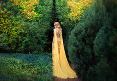 Slender beauty in elegant bright dress with stretching trains goes to thick of magical garden, golden elf princess with stock images