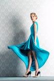 Slender female model Royalty Free Stock Photography