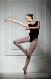 Slender girl ballerina Royalty Free Stock Photo