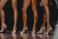 Slender legs Stock Photo
